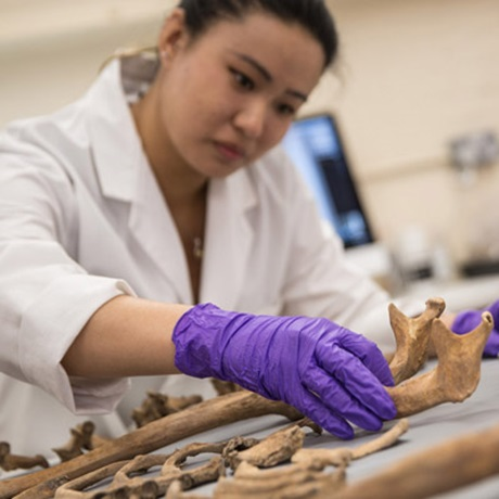 Further Forensic Anthropology Identification