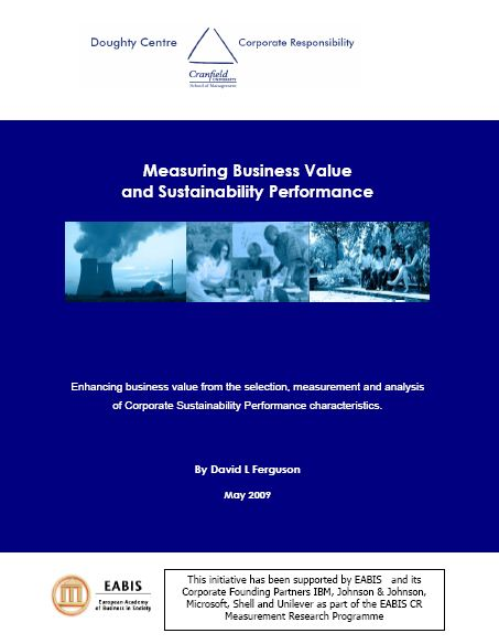 Working Paper - Measuring Business Value and Sustainability Performance - Cover