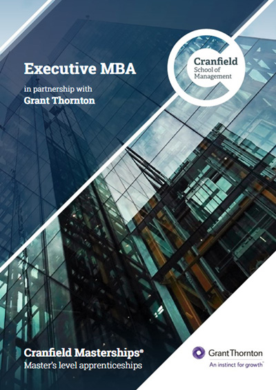 Executive MBA Brochure Employers