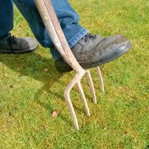 lawn with garden fork