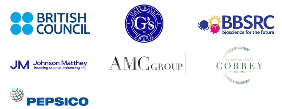 British Council, AMC Group, Johnson Matthey and Pepsico logos