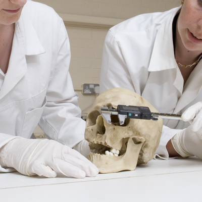 forensic anthropology papers Read papers from the keyword forensic anthropology with read by qxmd.