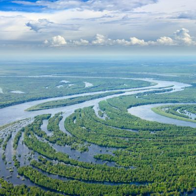 Aerial view of flooded forest and river